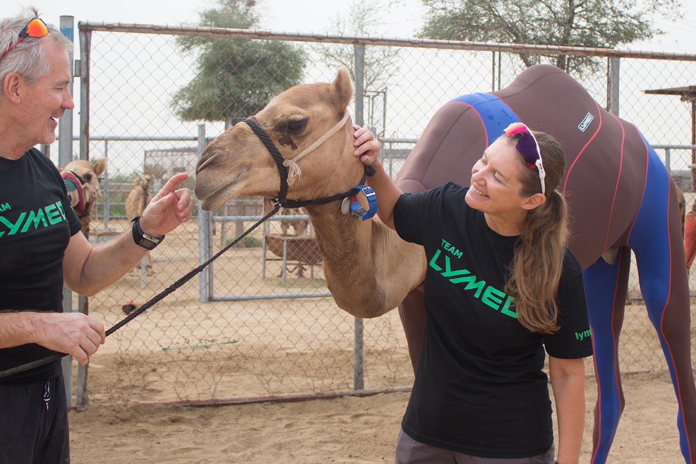 lymed_camel_7