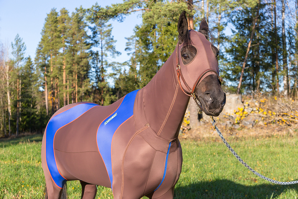 lymed_horse_hevonen_painehaalari3