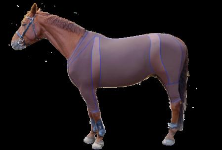 Felix_horse_suit2